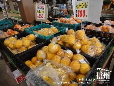 オレンジ系も沢山ありました