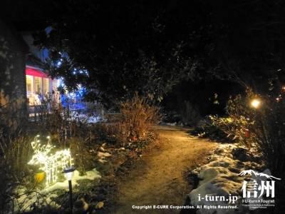 イルミネーションで輝くお庭
