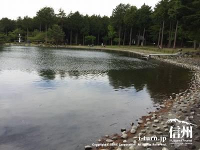 上段の大芝湖