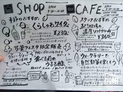 ショップやカフェの案内ビラ