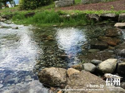 水がキレイな水路