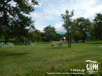 8月の公園は緑が茂って気持ちが良いです
