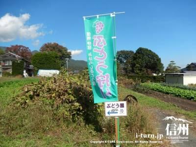 のぼり旗や看板で畑まで誘導してくれます
