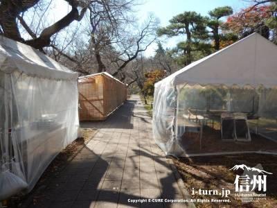明日から行われる秋まつりのテントが並んでいます