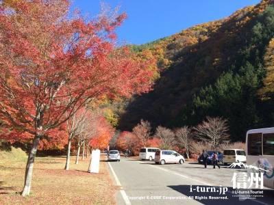 山の紅葉と紅葉の組合せ
