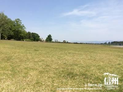 とても広い芝生が広がっています
