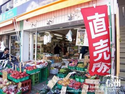 旧軽井沢銀座通り|人気の銀座通りは楽しい店が凝縮されている|軽井沢町軽井沢