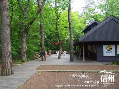 星野エリアピッキオ ビジターセンター|自然を満喫できる体験サービス|軽井沢町星野