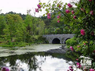 軽井沢レイクガーデン|洗練された英国調庭園|軽井沢町レイクニュータウン