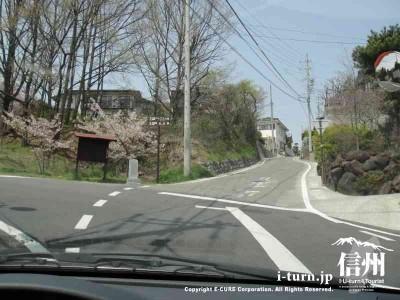 南欧料理 Ohishi おおいし|本格的なイタリアンと南欧料理の数々|松本市城山