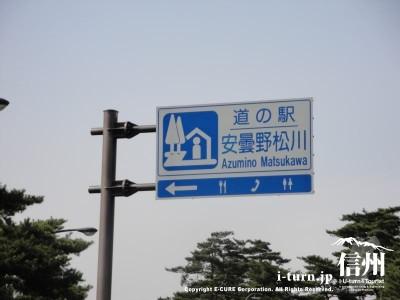 道の駅 安曇野松川|早春 花のじゅうたんまつり|松川村