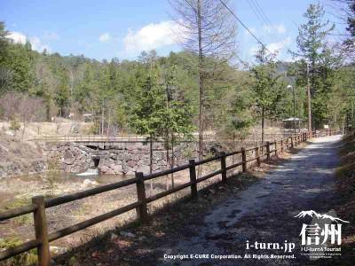赤沢自然休養林|森林浴発祥の地、樹齢300年以上の檜の森|木曽郡上松町