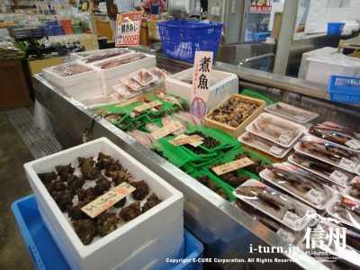 うみてらす名立|長野県民には海の道の駅は別世界|新潟県上越市