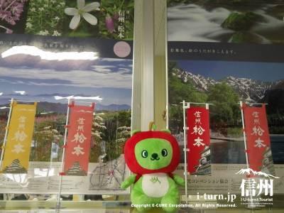 松本市観光情報センター|松本市内の案内・パンフなど|松本市大手・大名町通り