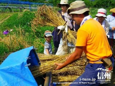 自給自足Life【1】|長野県内外で人気の無農薬・菜園教室|安曇野市三郷