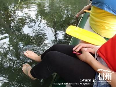 安曇野气船|大王わさび農場・3連水車そばでクリアボート体験| 安曇野市穂高