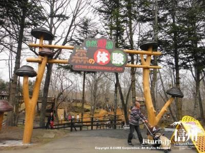 軽井沢おもちゃ王国【4】|渓流釣りやツリーハウスで自然を満喫|群馬県吾妻郡