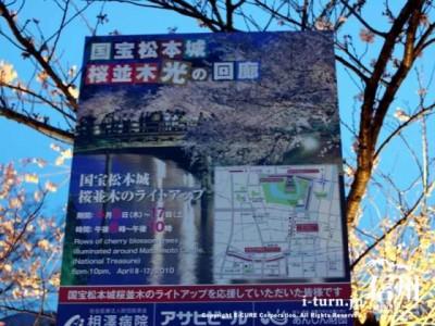 松本城桜並木「光の回廊」「夜桜会」|ライトアップされた松本城と桜|松本市丸の内